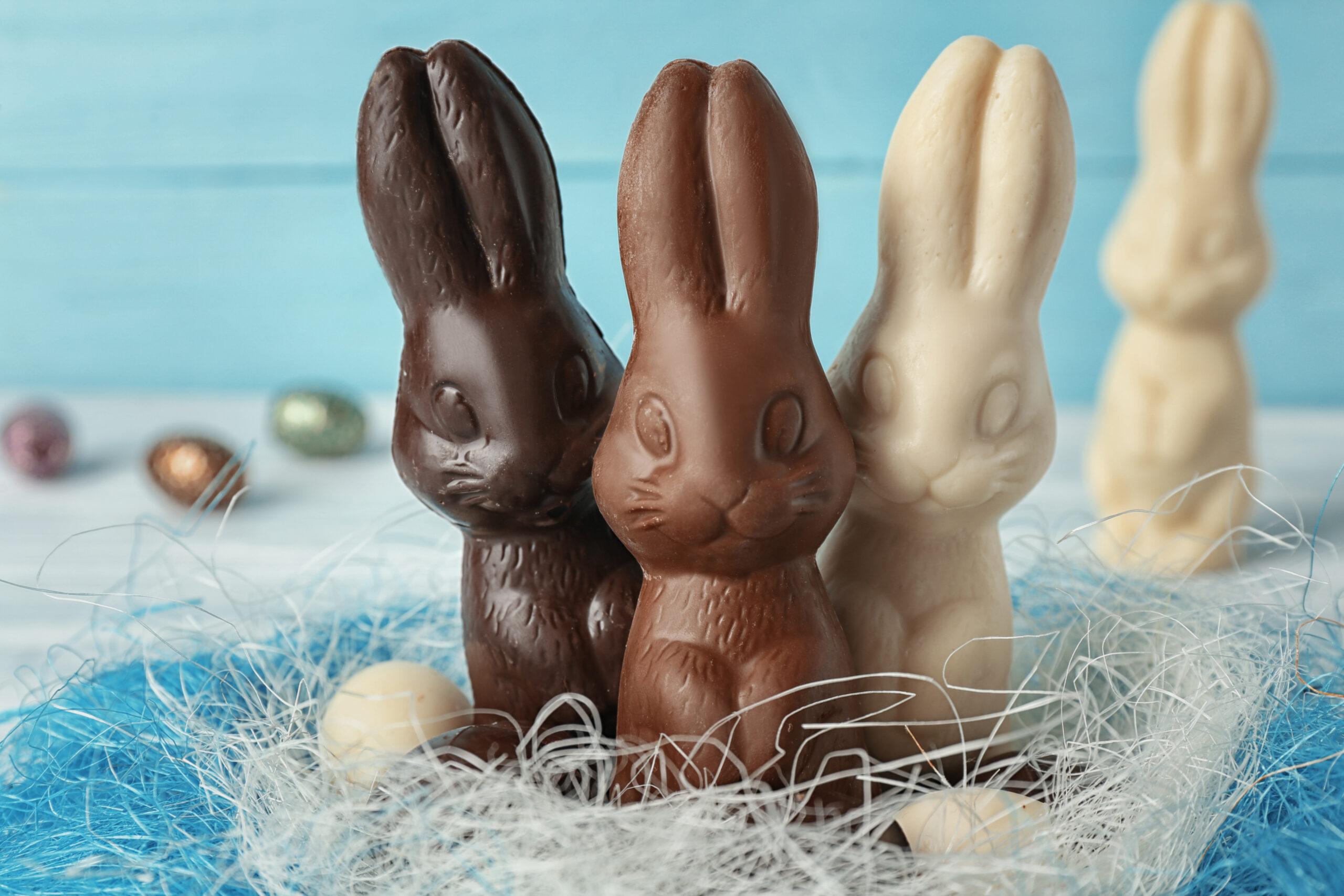 A year of the chocolate bunny and the pandemic